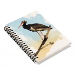 Cuaderno de Campo Cigüeña Negra