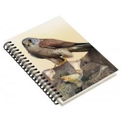 Cuaderno de Campo Cernícalo Primilla