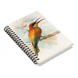 Cuaderno de Campo Abejaruco