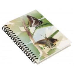 Cuaderno de Campo Mariposas