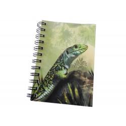 Cuaderno de Campo Lagarto Ocelado