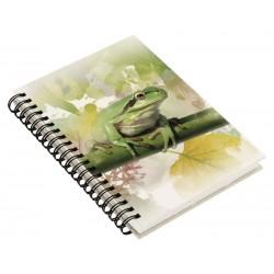 Cuaderno de Campo Rana