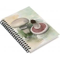 Cuaderno de Campo Champiñón Común