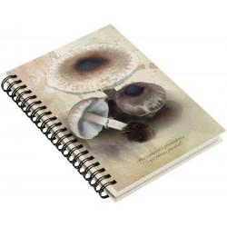 Cuaderno de Campo Galiperno, Parasol