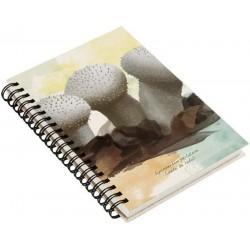 Cuaderno de Campo Pedo de Lobo