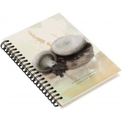 Cuaderno de Campo Lactarius Controversus