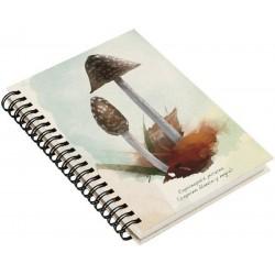 Cuaderno de Campo Coprinopsi Picacea