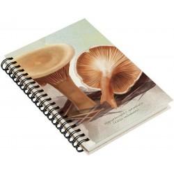 Cuaderno de Campo Falso Rebozuelo