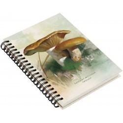 Cuaderno de Campo Lactarius Deliciosus