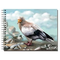 Cuaderno de Campo Alimoche