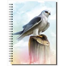 Cuaderno de Campo Elanio Azul