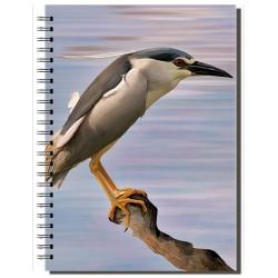 Cuaderno de Campo Martinete