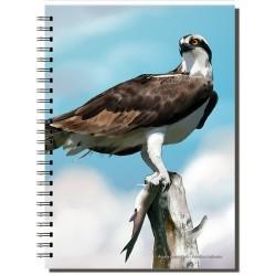 Cuaderno de Campo Águila Pescadora