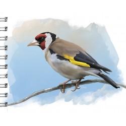 Cuaderno de Campo Jilguero