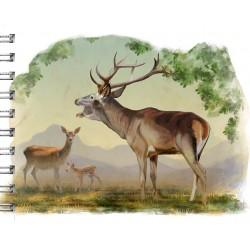 Cuaderno de Campo Ciervo en la Berrea