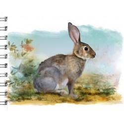 Cuaderno de Campo Conejo