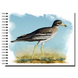Cuaderno de Campo Alcaraván