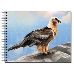 Cuaderno de Campo Quebrantahuesos