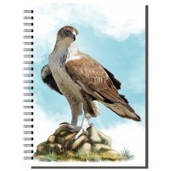 Cuaderno de Campo Águila Perdicera